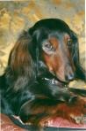 Muviron Veruska eli Ines 1998