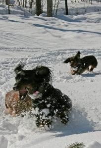 Siiri leikkii lumessa